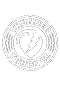 Skater iPhone Skateboarding Game Thunder Trucks Logo
